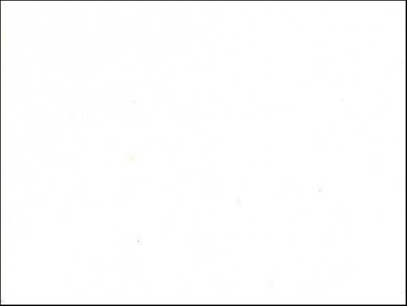 Керамогранит (кафель) 6201 / Белый